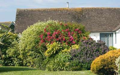 Home Landscaping – Do-it-yourself-landscaping tips